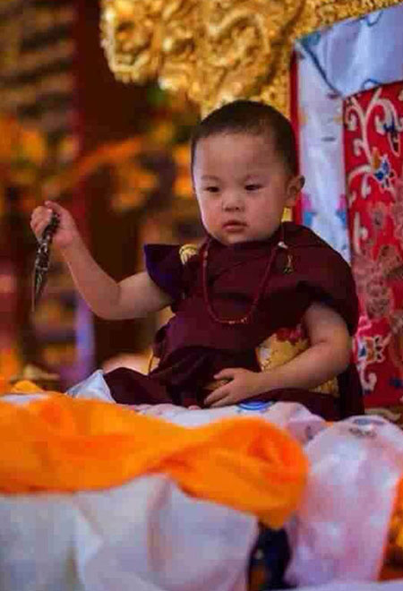 Pema Norbu Yangsi Rinpoche during the Enthronement Ceremony