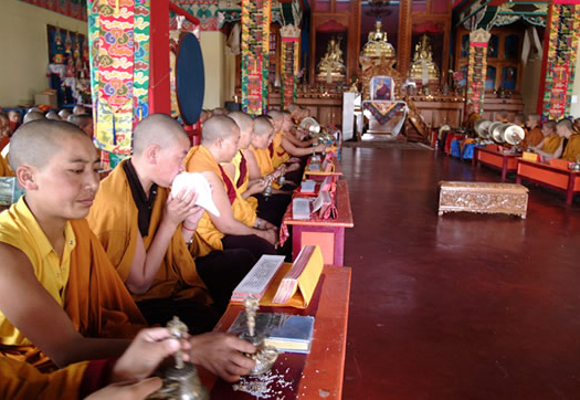 Tibetan nuns praying at Tsogyal Shedrup Dargyeling